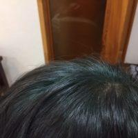長岡市 ハナヘナ白髪染め インディゴ