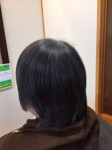 長岡市 ハナヘナ白髪染め