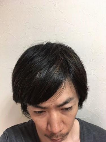 湯シャン生活1年8か月目の髪の状態