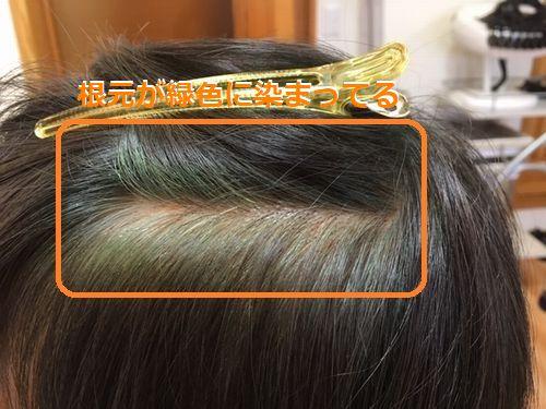 ハナヘナ 根元が緑色に染まる2