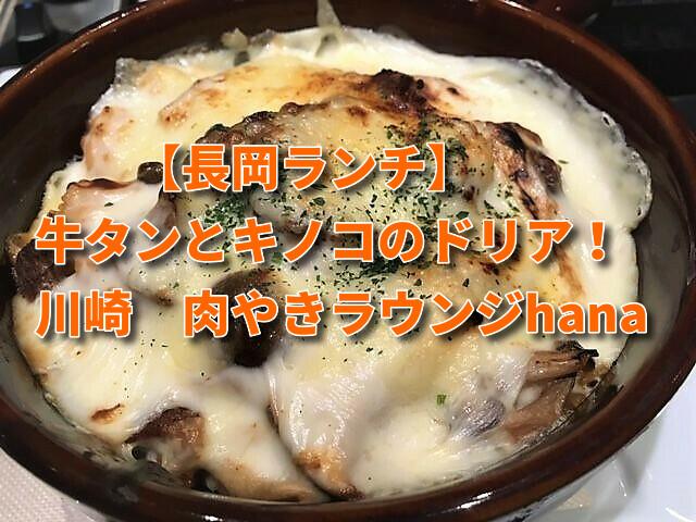 長岡ランチ ドリア 川崎 肉やきラウンジhana