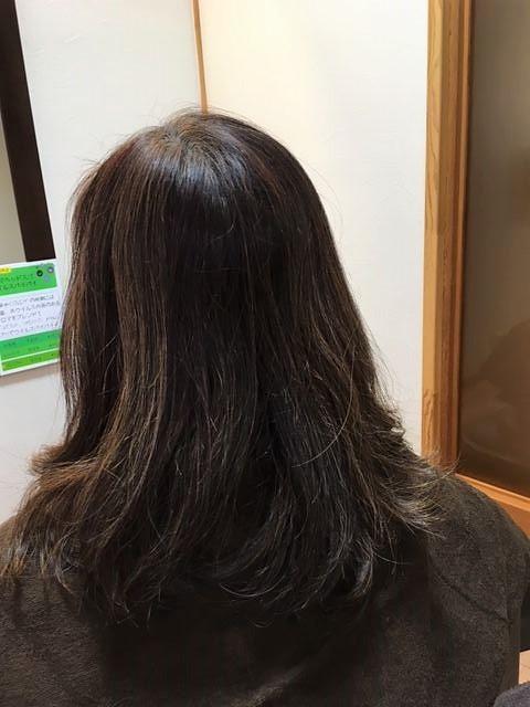 ハナヘナ毛にブリーチ(ハイライト)前