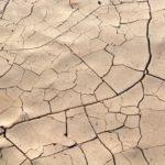 夏 頭皮 乾燥 原因