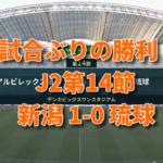 J2アルビ 第14節 新潟1-0琉球