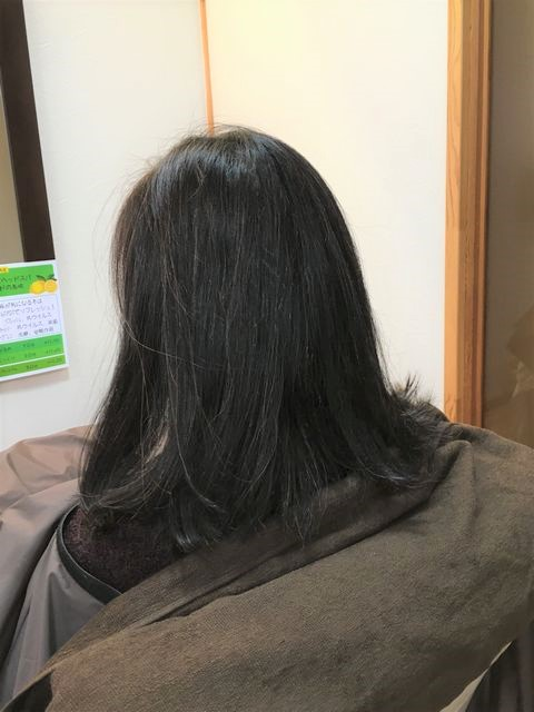ハナヘナ染めを3年間毎月続けた髪