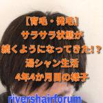 【育毛・発毛】サラサラ状態が続くようになってきた!?湯シャン生活4年4か月目の様子