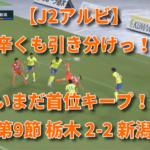 【J2アルビ】辛くも引き分けっ!いまだ首位キープ! 第9節 栃木 2-2 新潟