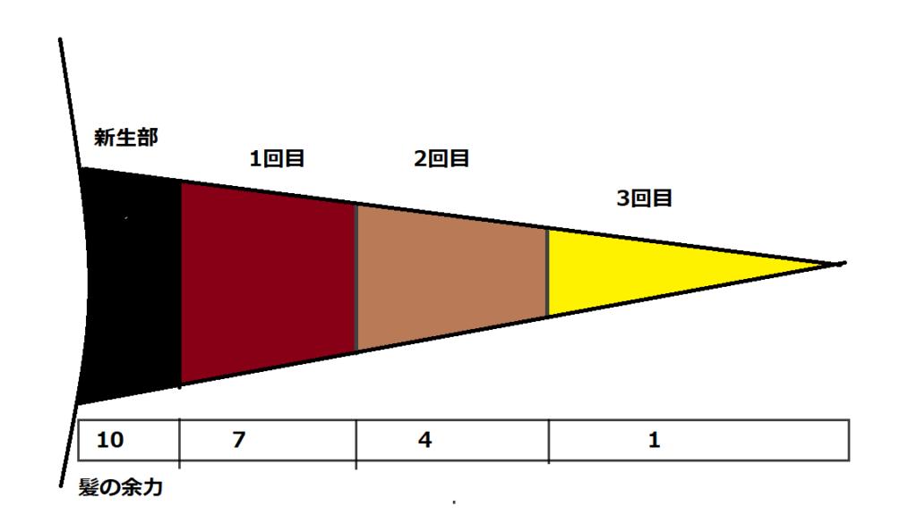 髪のダメージ図2