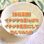 【家庭菜園】イチジクの葉っぱをイチジク葉茶にして飲んでみた件