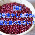【髪】髪を生やしたければ小豆を食べなさい!?
