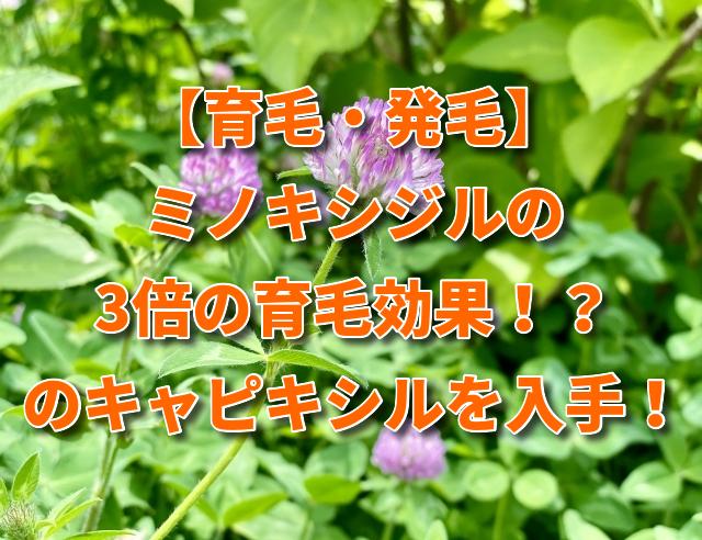 【育毛・発毛】ミノキシジルの3倍の育毛効果!?のキャピキシルを入手!